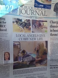 ABQ Journal Cubby