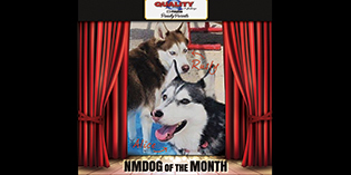 Quality Mazda Dogs of the Month: Rusty and Alice