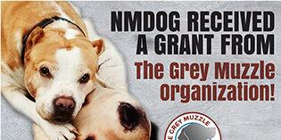 Grey Muzzle Grant